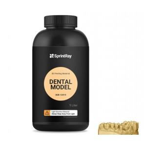 Rasina SprintRay Dental Model